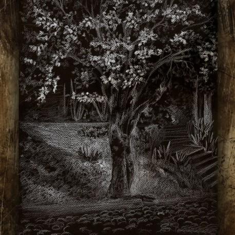 """Madrigal """"Conturbação Natural"""" Slipcase CD"""